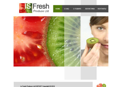 My History in Web sites Design